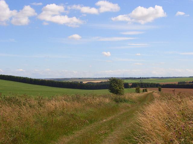 Track and farmland, Woolstone