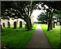 NU1241 : St Mary's churchyard, Holy Island by Chris Gunns