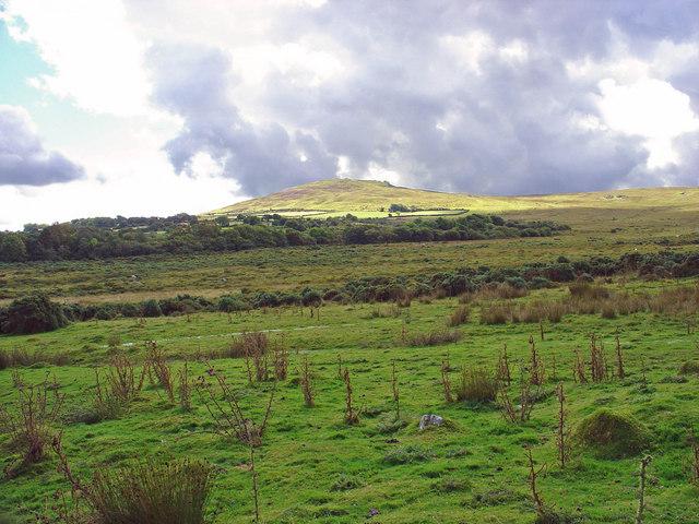 Moorland near Pantgwyn, Eglwyswen