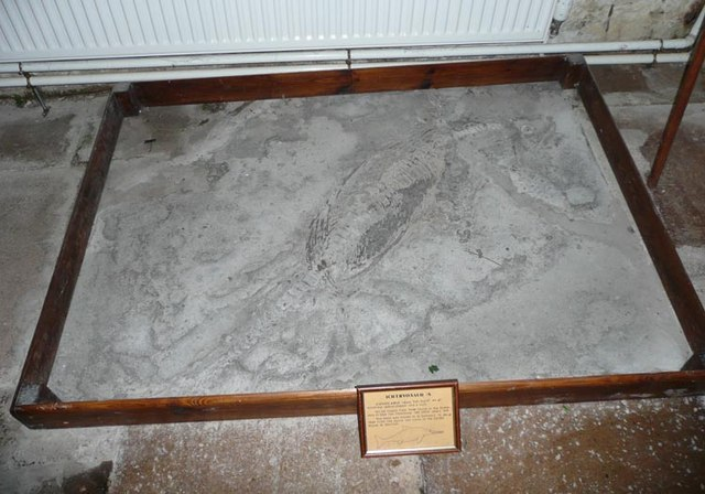 Ichthyosaurus in Stogursey church