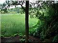 NU0801 : Blackburn Lake by Chris Gunns