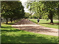 TQ2783 : Regent's Park running track by David Hawgood