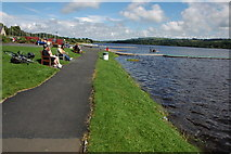 NS3559 : Castle Semple Loch by Philip Halling