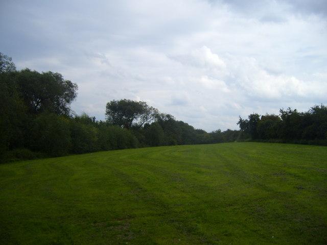 Open land off Upsall Grove