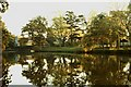 TQ2119 : Ewhurst Pond by Chris McBrien
