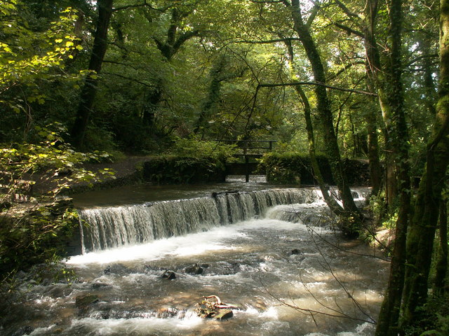 Cothele Mill Weir
