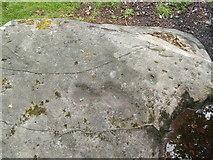 NS5073 : Cup markings in Auchnacraig Urban Park by Lairich Rig