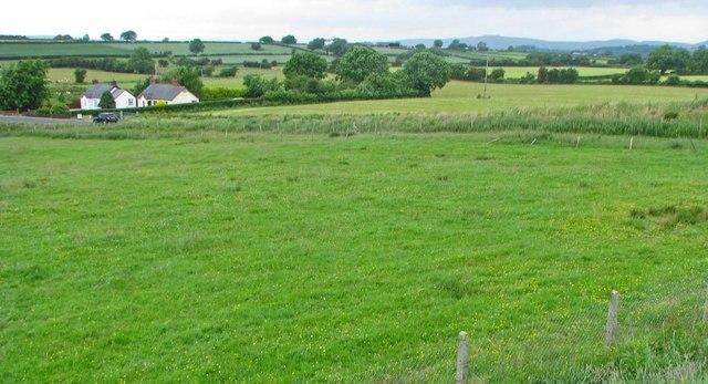 Gently undulating verdant fields