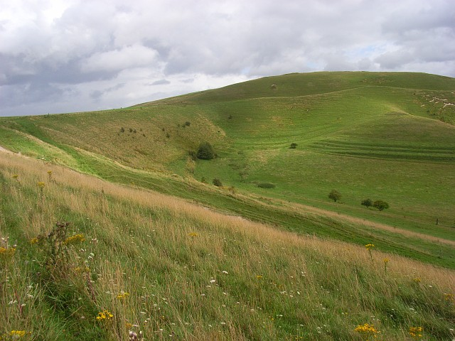 Downland, Bishops Cannings