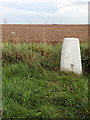 SE9238 : A Wolds way Trig Point by Andy Beecroft