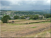 SE1307 : Fields at Nether Hill House, Cartworth by Humphrey Bolton