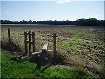SU6514 : Stile on the Monarch's Way by Peter Holmes