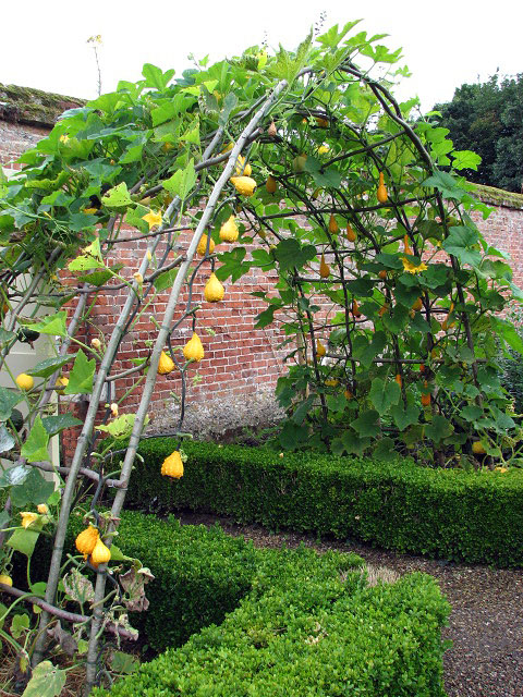 Arch at entrance to walled kitchen garden