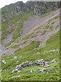 NY1920 : Bield Under Eel Crag by Michael Graham