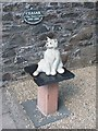 NX6851 : Ceasar the Town Cat by Lairich Rig