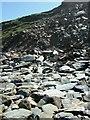 SW8364 : Cliff fall, Watergate Beach by Simon Huguet