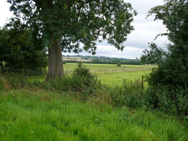 View across farmland towards Colley Broach Road