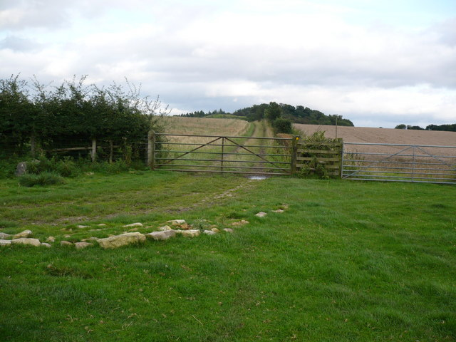 Public footpath east of Wass Grange