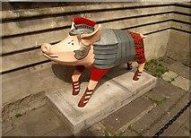 ST7565 : Pignacious, Bath by Derek Harper