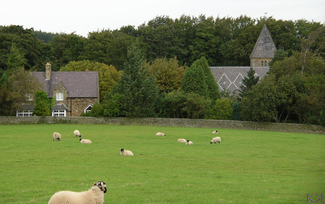 Across the sheep paddock to Hunstanworth
