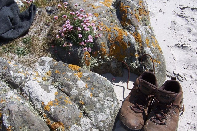 Sea Pinks and Boots