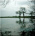 SE6417 : Sykehouse floods by Gerald England