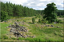 NX5987 : Polmaddy Historic Settlement by Leslie Barrie