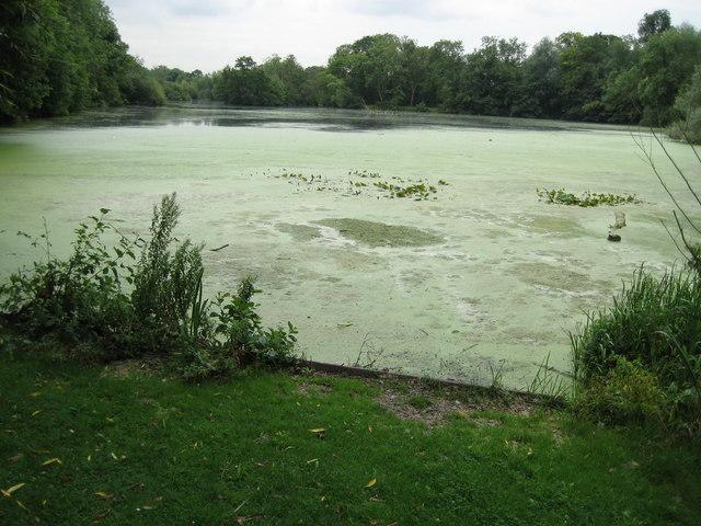 Cowley: Little Britain Lake