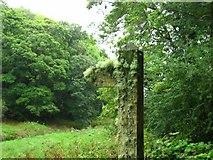 SM9611 : Camouflaged fingerpost by Shaun Butler