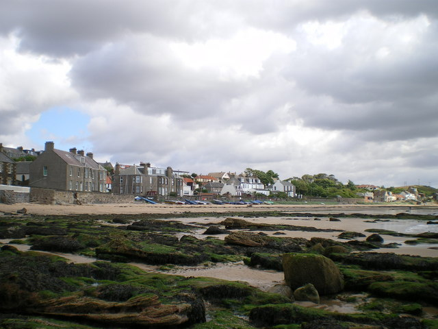 Beach and houses at Lower Largo by Richard Law