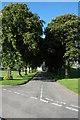 NY2332 : The Avenue, Bassenthwaite by Philip Halling