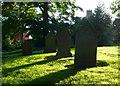 NZ3816 : St Mary's Longnewton by Nigel Mykura
