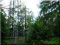 SD4892 : Communications Tower , Cunswick Fell by David Brown