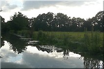 TQ0560 : River Wey Navigation near West Hall by Graham Horn