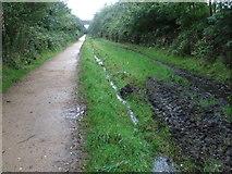 SK0296 : The Longdendale Trail towards Padfield Main Road bridge by Chris Wimbush