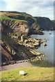 NT9069 : Cliffs beyond Pettico Wick by Sarah Charlesworth