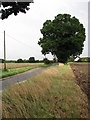 TF9831 : Approaching Fulmodeston by Evelyn Simak