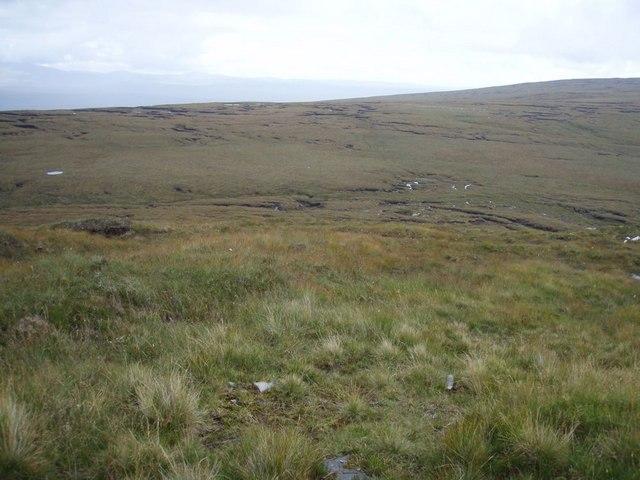 Ridged bog lines