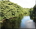 NZ3508 : The Tees River from Girsby Bridge by Antonia