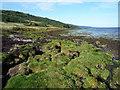 NH6850 : Shoreline of the Moray Firth near Kilmuir by Julian Paren
