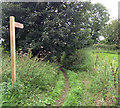 SE8821 : Permissive Footpath to Alkborough Flats by David Wright