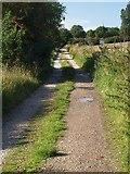 SJ9621 : Farm Track looking towards Greengore Lane by Tim Marshall