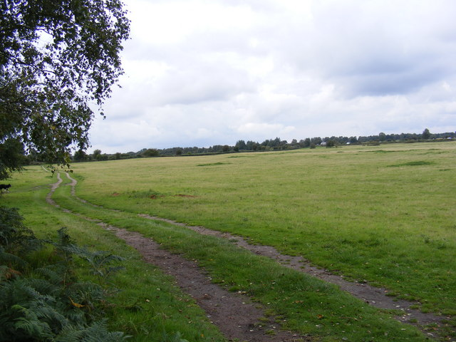 Bridgham Heath