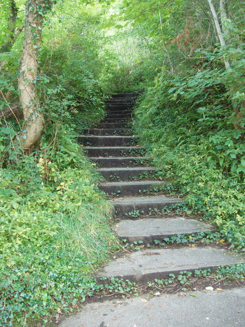 Steps on footpath below Babbacombe Downs