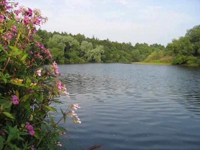 River Tyne near Ovingham