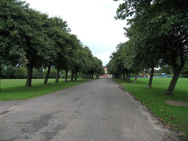 Avenue of Trees in Exhibition park