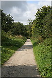 SX0567 : The Camel Trail near Scarlett's Well by Tony Atkin
