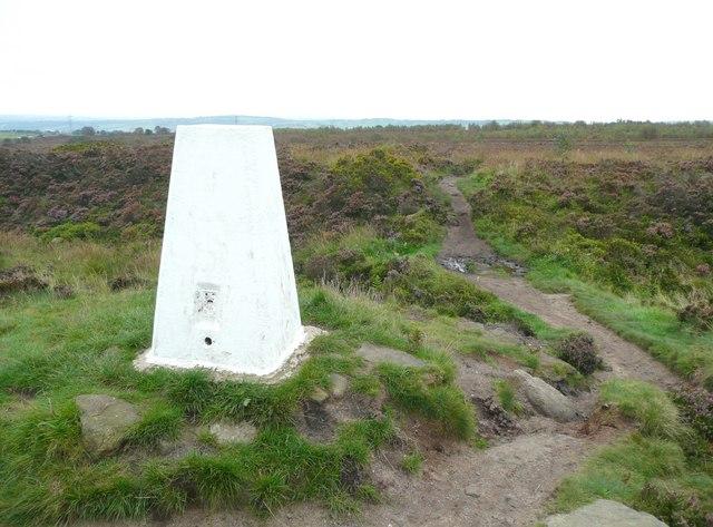 Triangulation pillar, Norland Moor, Norland