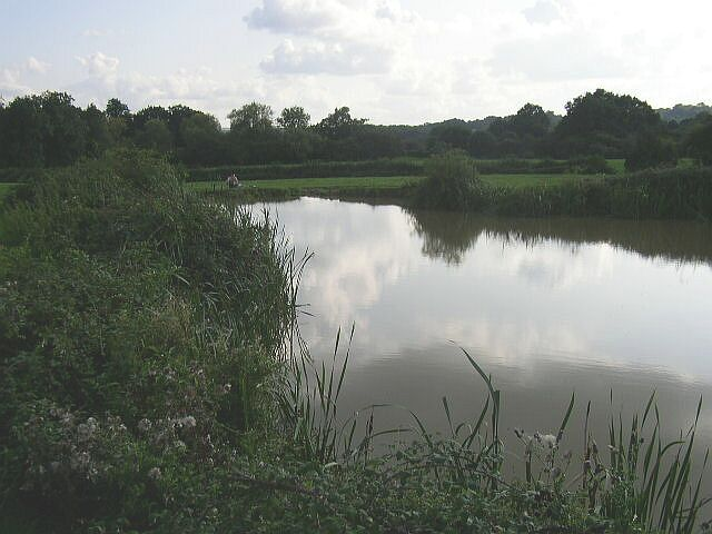 Small Lake by Willetts Farm
