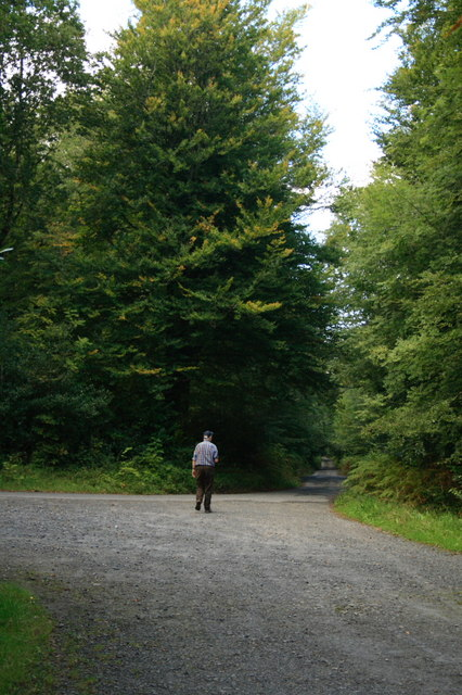 Woodstock Roadway